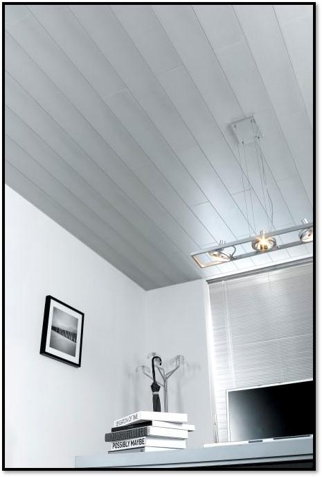 مدل سقف کاذب 44