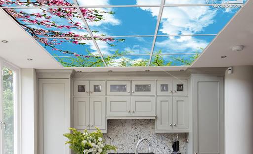 سقف کاذب آشپزخانه 5